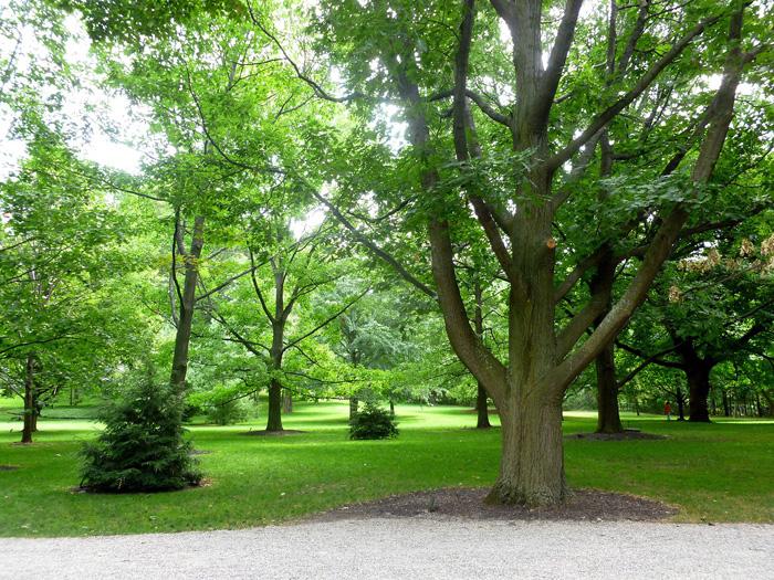 Парк в Ридо-холл